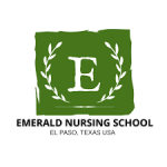 Emerald Nursing School logo