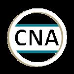 Nurse Nancy LLC logo